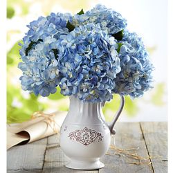 Fresh Market Hydrangea Bouquet in White Pitcher