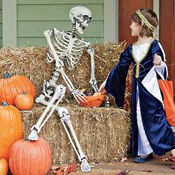 Buddy Bones Skeleton