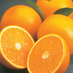 5 Pounds of Valencia Oranges