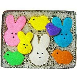 Marshmallow Bunnies Sugar Cookies Tin
