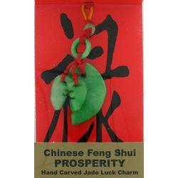 Feng Shui Jade Prosperity Bagwa Luck Charm