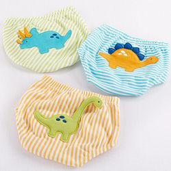 Dinomite 3-Piece Diaper Cover Gift Set