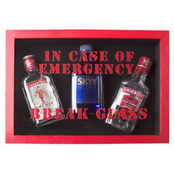Emergency Sobriety Extinguisher Kit