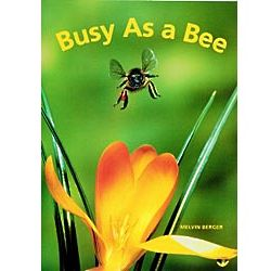 Busy As A Bee Big Book