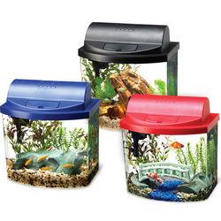 Mini Bow Desktop Aquarium Kit