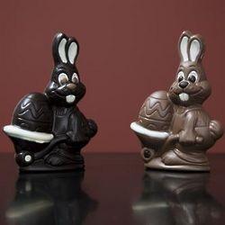 Easter Bunny with Eggbarrel Chocolates