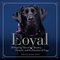 Loyal - 38 Inspiring Tales of Dogs Book