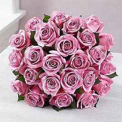 Passion for Purple Roses 24 Stem Bouquet