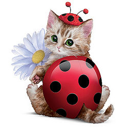 Cute as a Bug Cat Ladybug Figurine