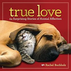 True Love Animal Affection Book