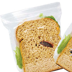 Lunch Sandwich Bags with Bug Design