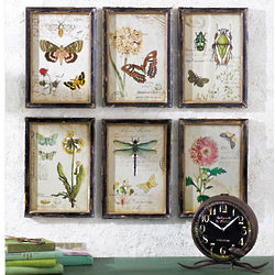 European Botanicals Wall Art