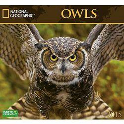 2015 Owls Wall Calendar