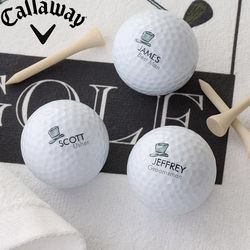 Personalized Wedding Party Golf Ball Set