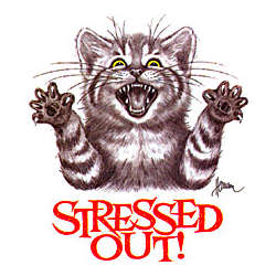 Stressed Out Kitty Cotton T-Shirt