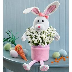 Easter Bunny Planter with Blooms