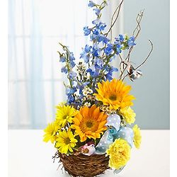 Welcome to the Nest Baby Boy Flower Basket
