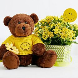 Get Well Bear with Kalanchoe Plant
