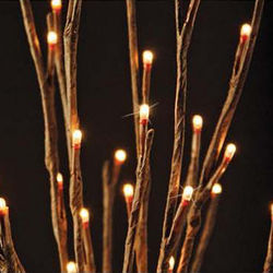 Lighted Willow Branch