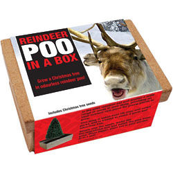 Reindeer Poo in a Box - Grow Your Own Christmas Tree!