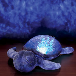 Seascape Projecting Turtle