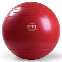Heavy Duty Weight Training and Strength Training Exercise Ball