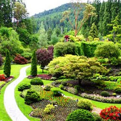 Victoria Day Trip and Butchart Gardens Tour