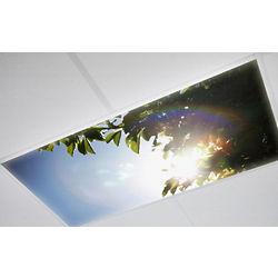 Tree-Rific Fluorescent Light Cover