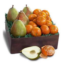 January Fruit Gift Box