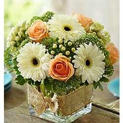 Modern Rose and Gerbera Daisy Bouquet