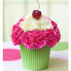 Cupcake Flowers in Bloom for Spring
