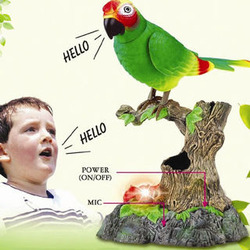 Talking Animated Parrot