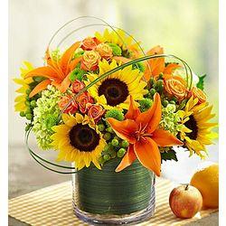 Sunburst Bouquet of Flowers