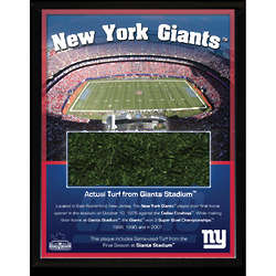 Giants Stadium Turf Plaque