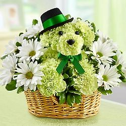 Lucky Dog Green Carnation Bouquet Basket