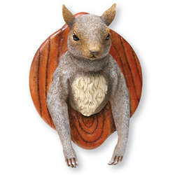 Mounted Squirrel Head
