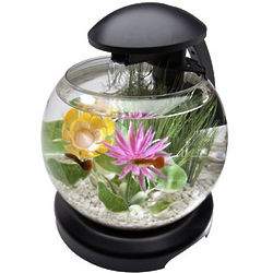1.8 Gallon Waterfall Globe Aquarium Kit