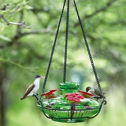Recycled Glass Perch Hummingbird Feeder