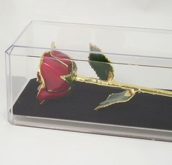 "Perfect 11"" Preserved Red Rose"