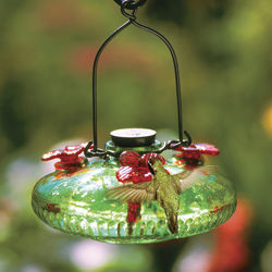 Green Bloom Hummingbird Feeder