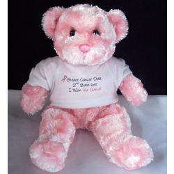 Breast Cancer Stole 2nd Base Bear