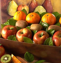 Arbor Harvest Medium Fruit Box