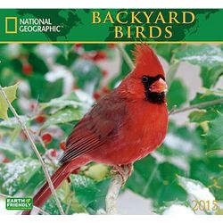 2015 Backyard Birds Wall Calendar
