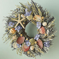 Natural Shells Wreath