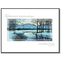 Winter Birds Scene Christmas Card