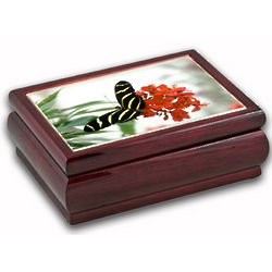 Black and Yellow Butterfly Musical Jewelry Box