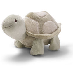 Crawl With Me White Turtle Toy