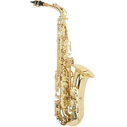 Student and Beginner's Alto Saxophone