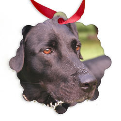 Custom Photo Scalloped Style Ornament