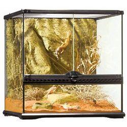 Desert Reptile Glass Terrarium